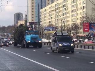 В центр Киева привезли главную новогоднюю елку Украины - Цензор.НЕТ 6238